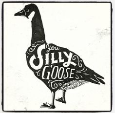 Silly goose!
