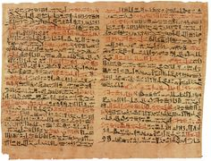 The oldest surviving medical document about 1600 years old describing approximately 48 treatments and observations and conditions in detail