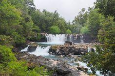 Tour em meio à selva chilena | Jornalwebdigital