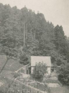 Hütte im Grünen, 1918