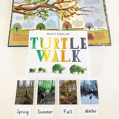 Turtle walk. Nice and slow. Here we go! Explore all four seasons with this charming—and patient!—turtle family. Award-winning author-artist Matt Phelan guides the youngest readersfrom the first blooms of spring and the scorching sun of summer to the crisp leaves of fall and fat snowflakes of winter. Fans of Anna Dewdney and Tad Hills will want to go on this journey again and again. 📸 @activelearningplaybook