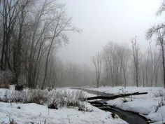 Homeschool Family Hike at Sand Run Metro Park Akron, OH #Kids #Events