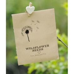 Seed Packet Favour with Dandelion Design - perfect favour for a perfect meadow wedding!