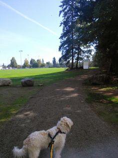 Rotary Trail at Bill Moore Park Courtenay BC