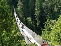 Capilano Suspension Bridge  Vancouver, BC