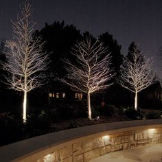 Have you just bought a new or planning to instal landscape lighting on the exsiting house? Are you looking for landscape lighting design ideas for inspiration? I have here expert landscape lighting design ideas you will love. Backyard Lighting, Outdoor Lighting, Lighting Ideas, Tree Lighting, Modern Lighting, String Lighting, Office Lighting, Lighting Solutions, Modern Landscaping