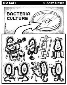 Vida de bactéria em: Placa Petri http://www.minutobiomedicina.com.br/postagens/2014/06/24/vida-de-bacteria-em-placa-petri/ *** Sigam @GoUpMkt
