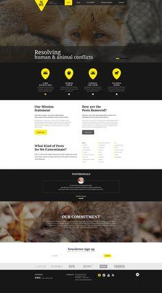 Website Template , Wild Life