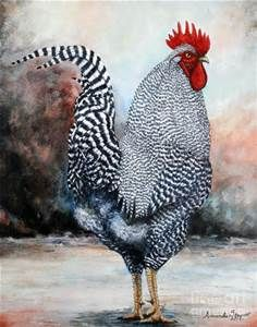 Artist Images of Chickens - Yahoo Image Search Results