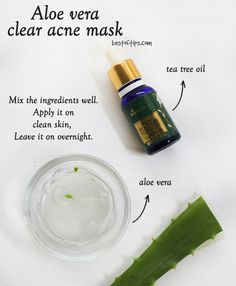 Tea Tree Oil And Aloe Vera Face Mask For Acne Treatment - Tea Tree Oil And Aloe Vera Face Mask For Acne Treatment – BestOfTips Effektive Bilder, die wir üb - Cystic Acne Treatment, Back Acne Treatment, Skin Treatments, Aloe Vera For Face, Aloe Vera Face Mask, Aloe For Acne, Tea Tree Oil For Acne, Beauty Hacks For Teens, Acne Oil