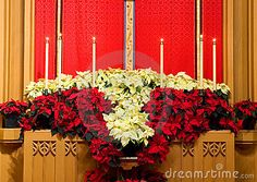 A view of the altar in the chancel of a modern Protestant church, decorated with red and white poinsettias for the Christmas season.