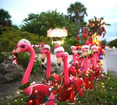 Outdoor Christmas Decoration, 3-D Lighted Pink Flamingo in Santa ...