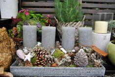 Adventní svícen | Living.cz Christmas Deco, Christmas Wreaths, Xmas, Table Decorations, Plants, Home Decor, Bottles, Store, Waiting Staff