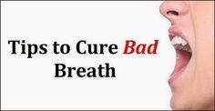 Tips to Get rid of Bad Breath   Health Villas