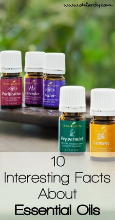 Are you curious about the hype about Young Living Essential Oils? Oh Lardy gives you 10 facts about essential oils and how they can benefit your health and wellness.