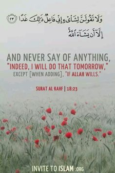 """""""And never say of anything, 'Indeed, I will do that tomorrow.' except [when adding] 'If Allah wills'."""" Qur'an - Sourat al-Kahf Islam Muslim, Islam Religion, Allah Islam, Islam Quran, Quran Surah, Quran Pak, Islam Beliefs, Islamic Teachings, Muslim Quotes"""