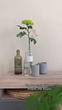 Upcycle wine bottles into vases? Yes you can! Rinse the bottles with water, soak the labels off, rub the bottles dry and get started with a beautiful composition! In this video & article we'll give you some tips.   upcycle bottles diy - upcycle wine bottles diy - upcycle liquor bottles diy - upcycle bottles diy - repurpose glass bottles - glass bottle diy projects - what to do with glass bottles - gin bottles upcycle diy - diy upcycle videos - diy projects ideas upcycle videos #video #anthurium Liquor Bottles, Glass Bottles, Indoor Garden, Indoor Plants, Videos Video, House Plant Care, Perfect Plants, Garden Care, Houseplants