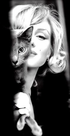 Marilyn Monroe with a Russian Blue #cats