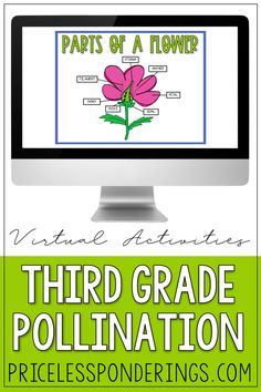 Struggling with time and creating lesson plans for your science class? If you can't do it yourself, grab these low-prep and engaging pollination and parts of a flower digital activities and interactive worksheets. Social Studies Curriculum, Science Curriculum, Science Resources, Interactive Activities, Hands On Activities, Science Activities, Writing Activities, Fun Writing Prompts, Cool Writing