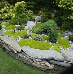 What a great idea for moss, stone and tiny bonsai plants. Landscaping With Rocks, Backyard Landscaping, Landscaping Ideas, Landscaping Software, Luxury Landscaping, Landscaping Company, Unique Gardens, Beautiful Gardens, Dream Garden