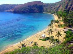 """Snorkled in Hanauma Bay in Oahu, HI, where Elvis filmed part of """"Blue Hawaii"""". My life was officially complete. Can't wait to go back. :)"""