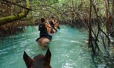 Vanuatu's Espiritu Santo, where paradise is a leaky canoe without a paddle | Vanuatu holidays | The Guardian