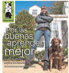 Con paciencia y cariño, pero con firmeza y constancia, es posible tener al perro ideal.