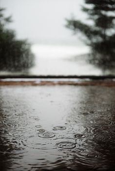 puddle and raindrops | 79 Ideas