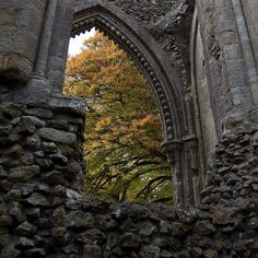 petitpoulailler:    history-and-mystery:Glastonbury Abbey, Somerset, England in Autumn