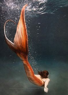 ♒ Mermaids Among Us ♒ art photography & paintings of sea sirens & water maidens - orange: