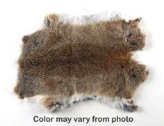 Rabbit Skin | Lots of cool science stuff | Pricy