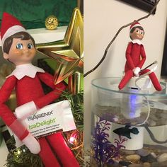 """""""Today I met with with Ben Parrish and Lisa Medders our Canterbury Farms agents. Lisa taught me about Isagenix and why she is a firm believer in the product and Ben taught me the basics of fishing. I was pretty close to catching one!"""" - Jake the Elf  #jaketheelf #elfontheshelf #officefun #holidays #iveyhomes Ivey Homes is an award-winning locally owned Augusta GA homebuilder. Homes from the Low $100's to Custom."""