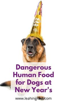 Are you looking for a list of toxic food for dogs? This blog post on human food that is dangerous to dogs can help. It even includes checklist of what you can and cannot feed your pet. Also focuses on the holiday season. Toxic Foods For Dogs, Dangerous Foods For Dogs, Human Food For Dogs, Dog Rooms, Dog Hacks, German Shepherds, Dog Owners, Best Dogs, Dog Food Recipes