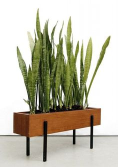 If you want to grow some plants or vegetables in your yard, first you are going to need some good planter boxes. DIY planter box designs, plans, ideas for vegetables and flowers Diy Wooden Planters, Wooden Diy, Wooden Lamp, Wooden Pallets, Furniture Care, Patio Furniture Sets, Furniture Ideas, Garden Furniture, Wood Furniture