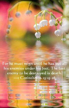 1 Cor 15:25-