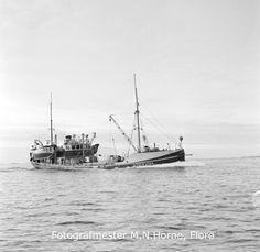 """Snurparen """"Vigra"""" (R-290-A) frå Vedavågen på Karmøy, på veg til lands med full last for å melde inn og levere sildefangsten. M/K """"Vigra"""" var bygd av jarn i 1899 og ombygd i 1951. Båten var 130 fot lang, 21,6 fot brei og 11,5 fot djup. Maskina var ein 360 Hk Scandia frå 1947. Eigar av """"Vigra"""" var den kjende sildefiskaren Håkon Hatløy mfl. Vedavågen, Åkra kommune. Sailing Ships, Boat, Dinghy, Boats, Sailboat, Tall Ships, Ship"""
