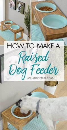 Cool feeding station ! DIY raised dog feeder / dog feeder tutorial / rustic dog feeder - Tap the pin for the most adorable pawtastic fur baby apparel! You'll love the dog clothes and cat clothes!