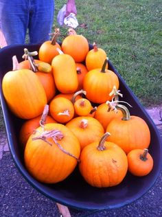 Decorating for Fall Outside - Walking on Sunshine