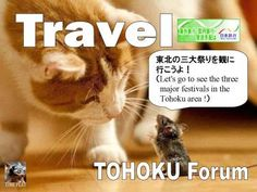 Let's go to see the three major festivals in the Tohoku area ! timein.jp