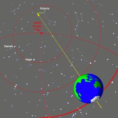 "The 26,000-year cycle of precession as seen from near the Earth. The current north pole star is Polaris (top). In about 8,000 years it will be the bright star Deneb (left), and in about 12,000 years, Vega (left center). The Earth's rotation is not depicted to scale – in this span of time, it should rotate over 9 million times. Mona Evans, ""Ecliptic and Equinoxes"" http://www.bellaonline.com/articles/art20530.asp"