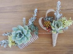 Nicoles' wedding collection | Urban Succulents More