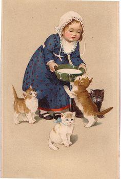 vintage cats...