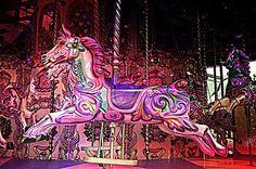 紫パープル赤ピンク素材背景壁紙馬メリーゴーランドの画像 プリ画像