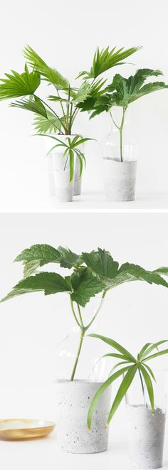 DIY Concrete & Glass Vases