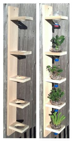stenlagd rabatt Hanging drip garden bySolidWoodWorks on Etsy Hanging drip garden bySolidWoodWorks on Etsy Shoe Rack Organization, Entryway Organization, House Plants Decor, Plant Decor, Easy Woodworking Projects, Diy Wood Projects, Wooden Garden Ornaments, Bois Diy, Hanging Plants