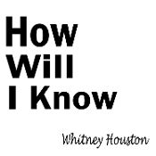 New Custom Screen Printed Tshirt Whitney Houston How Will I Know