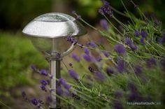 https://twitter.com/r_altenburg #synchroonkijken dag 3: breng vandaag de zomer van 2013 in beeld, nou dan maar de natte solar lampjes in onze tuin...
