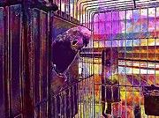 """New artwork for sale! - """" Birds Cage Parrots Parrot In Cage  by PixBreak Art """" - http://ift.tt/2h0MJsE"""