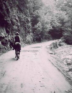 SWAV Studio (@swav_studio) | Twitter Romania, Travel Inspiration, Country Roads, Studio, Twitter, Outdoor, Art, Art Background, Study