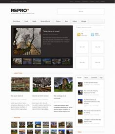 Repro Drupal 7 Responsive Drupal Theme Linkedin Network, Website Design Services, Mobile Responsive, Drupal, Social Marketing, Finance, At Least, Web Design, Good Things